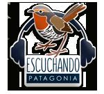 Escuchando Patagonia